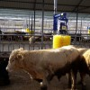Tarım-Hayvancılık ve İ-Mak Redüktör