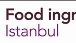Fi Istanbul.jpg